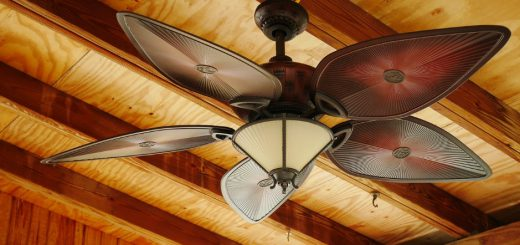 brown and white 5 blade ceiling fan with light fixture