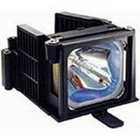 Acer ec.j2901.001 Projector Lamps
