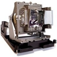 BenQ 5j.j0w05.001 Projector Lamps