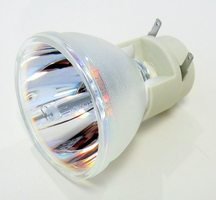 69806 Bulb