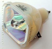 Philips Lighting PHI388RL Bare Bulb Remote Controls