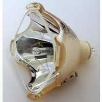 PHILIPS 148361 Projector Lamps