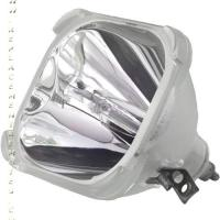 312243871310 Bare Bulb Only P/N: 312243871310-BB