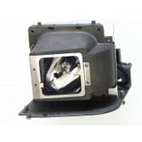 TOSHIBA tlplp20 Projector Lamps