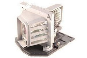 TOSHIBA tlplv10 Projector Lamps