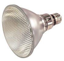 Ushio 1001484 Lamp Assemblies