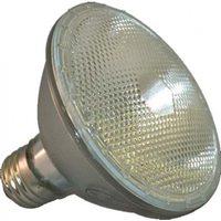Ushio 1001536 Lamp Assemblies