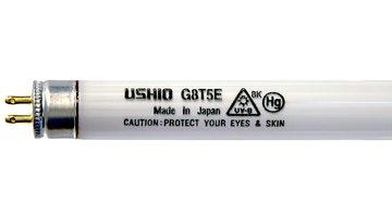 Ushio 3000318 Projector Lamps